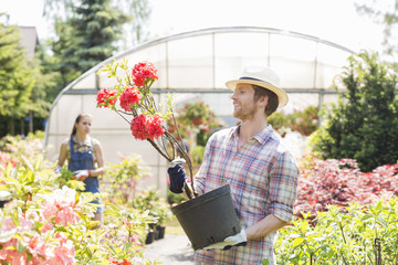 Male gardener examining flower pot with colleague standing in background outside greenhouse