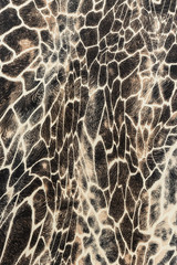texture of print fabric stripes giraffe
