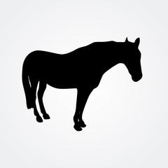 Horse - vector illustration