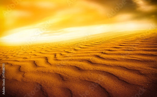 Naklejka Sunset over the Sahara Desert