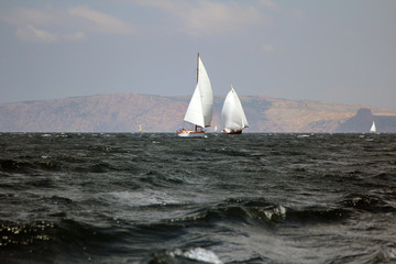 sailing regatta along the coast