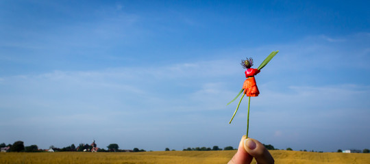 Puppet made of poppy flower against sky