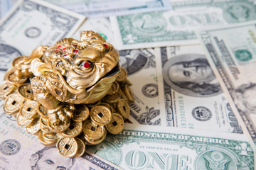 Chinese frog dollars background