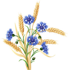 Cornflowers and ears of wheat bunch