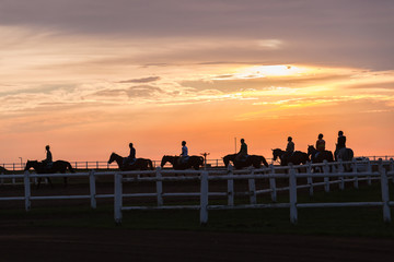 Race Horses Track Riders Silhouetted Landscape