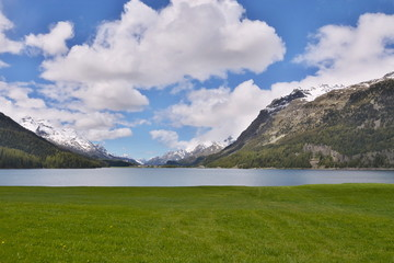 Swiss Alps-view of the lake of Silvaplana