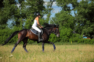Riding lessons in the field