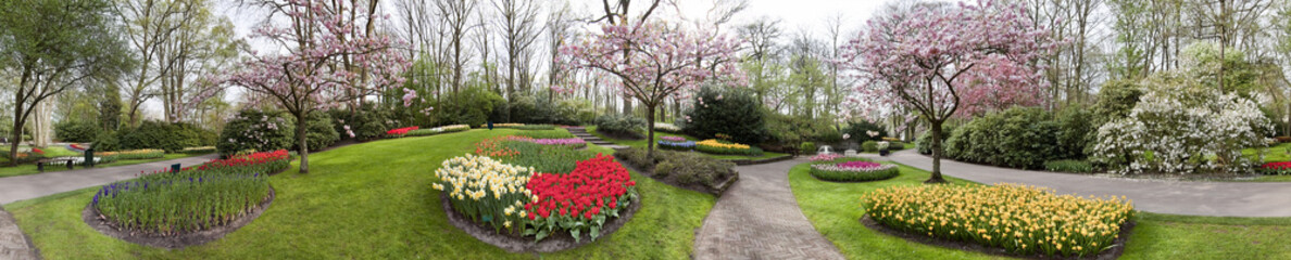Keukenhof Panorama Holland