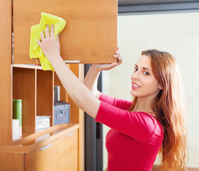 Smiling red-haired woman cleaning wooden furiture