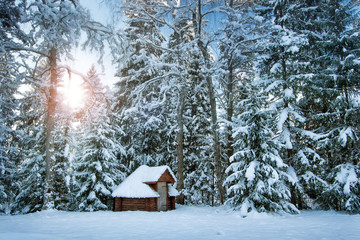 hut in snowy forest