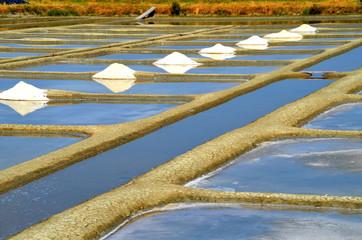 petits mulons de sel marais Noirmoutier