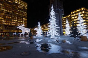 Christmas moose and christmas trees made of light
