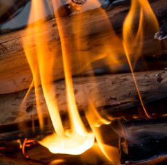 flames of fire from wood