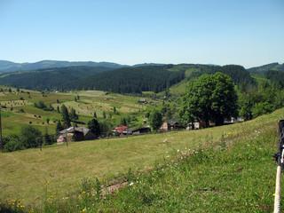meadow  mountains