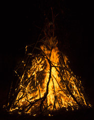 close-up big campfire at the night