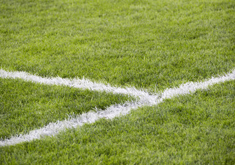 close-up grass at soccer field with corner line