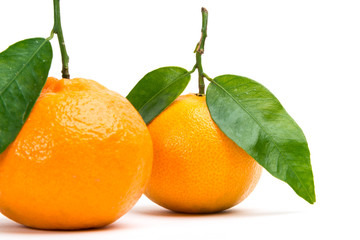 two_clementines