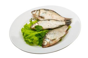 Crucian fish