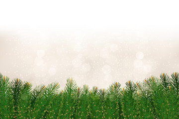 Christmas background with christmas tree branches. Vector illust