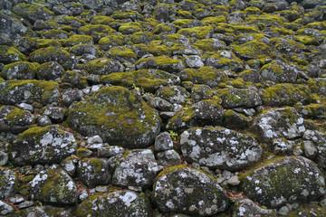 苔むした野面積みの石垣