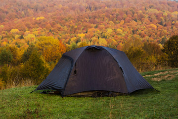 tent in the yellow autumn forest