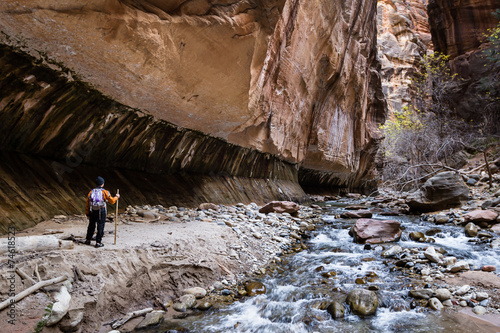 hiking the Narrows in Zion NP - 74618523