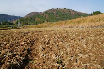 耕した冬の田んぼ