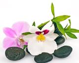 Auszeit: Orchideen, Steine und Bambus :)