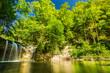 Forêt  du jura FRANCE