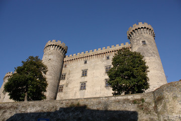 Castello Orsini, Viterbo