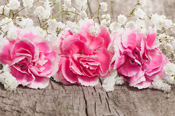 Beautiful white gypsophila and pink flowers on a wooden board. G
