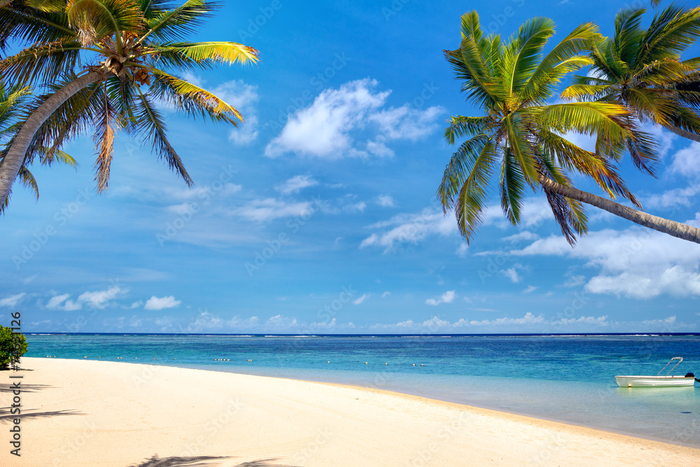 foto auf acrylglas perfect tropical beach with palms and. Black Bedroom Furniture Sets. Home Design Ideas