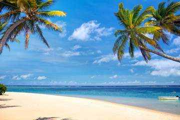 Perfect tropical beach with palms and sand, Mauritius