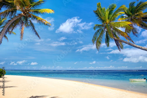 Poster Eiland Perfect tropical beach with palms and sand, Mauritius