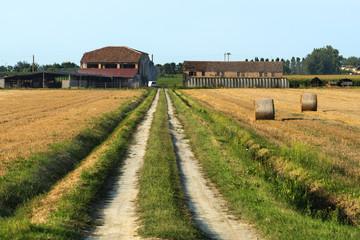 Country landscape near Ferrara (Italy)