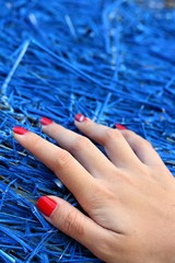 Hand of women on a blue background.