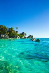 Exotic Paradise Summer