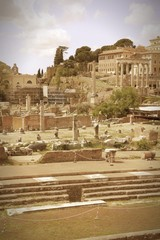 Ancient Rome. Cross processed color tone.