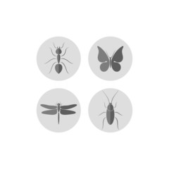 Insect. Icon set