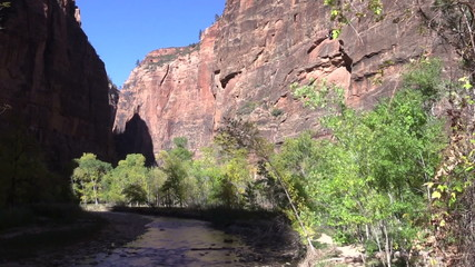 Virgin River Zion National Park in Fall