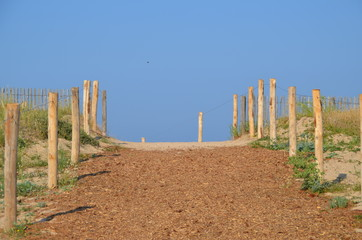 montée a la dune