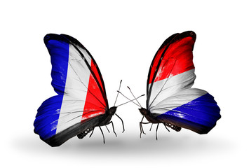 Two butterflies with flags France and Holland
