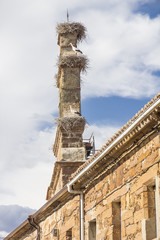 bell tower with nests of storks in Tabara, Spain