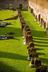 View of the Stadium's columns at the Palatine Hill, Rome