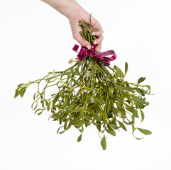 Womans hand holding bunch of ribbon tied Mistletoe