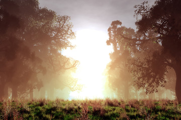 Mysterious Magical Fantasy Fairy Tale Forest Sunset Sunrise 3D
