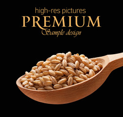 Pearl barley in a wooden spoon  isolated on black background