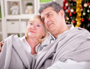 Portrait of smiling senior couple in Christmas  sitting at home