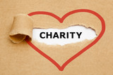 Charity Torn Paper
