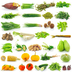 vegetable on white background